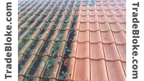 Roof cleaning services in brisbane ,sydney and australia